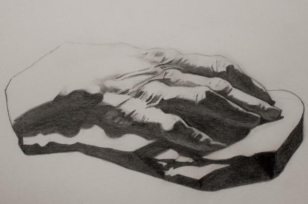 Bargue - Voltaire's Hand - pencil drawing