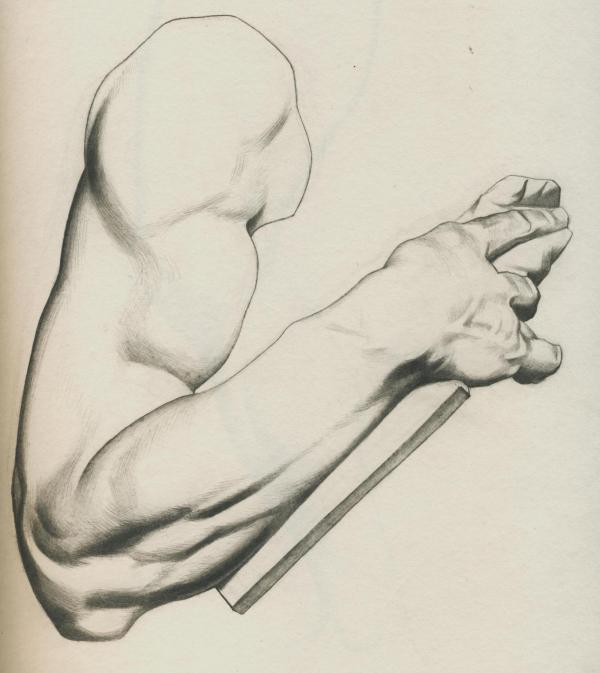Plate I, 024 - Arm of Moses by Michelangelo - Attempt 2: This is my second attempt at this plate.